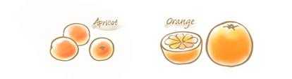 アプリコット&オレンジのコンフィチュールのイラスト