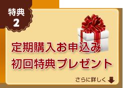 定期購入お申込み 初回特典プレゼント