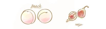白桃&いちじくのコンフィチュールのイラスト
