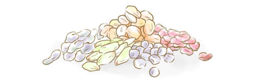 レーズン&ベリーミックスのドライフルーツ