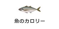 魚のカロリー