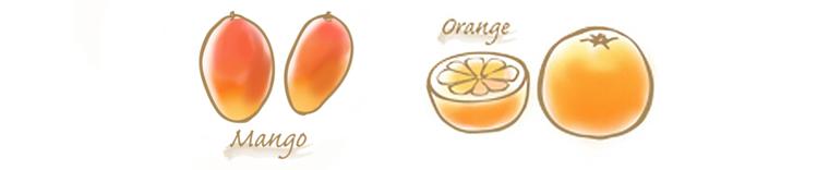 マンゴー&オレンジのコンフィチュールのイラスト