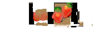 苺&フランボワーズのコンフィチュールのイラスト