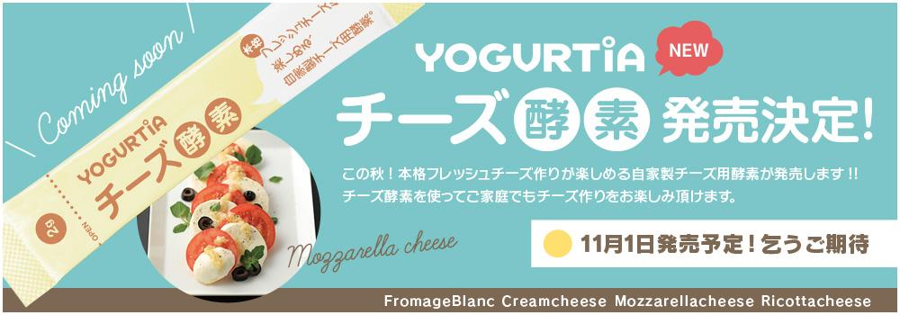 チーズ酵素告知
